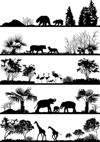 Silhouette Safari